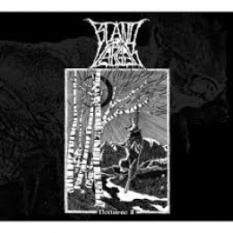 BLAND VARGAR - Notturno 11