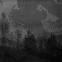 INMITTEN DES WALDES / MORTUALIA - split CD