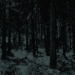 MOLOCH - Abstrakte Wald