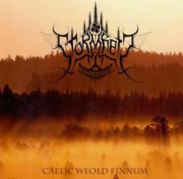STORMHEIT - Caelic Weold Finnum