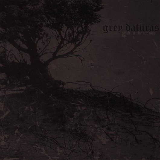 GREY DATURAS - Dead In The Woods