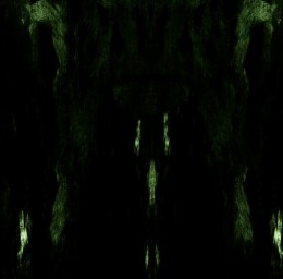 IMPETUOUS RITUAL – Unholy Congregation Of Hypocritical Ambivalence