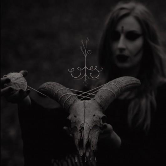 OLS - Widma