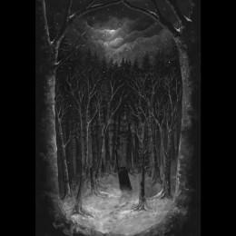 PAYSAGE D'HIVER - Im Wald 2CD