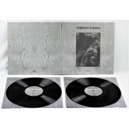 PAYSAGE d'HIVER - Steineiche Vinyl 2-LP