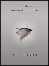 ASHRAM - Gathered Under Shining Silver Skies DVD