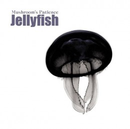 MUSHROOM´S PATIENCE – Jellyfish