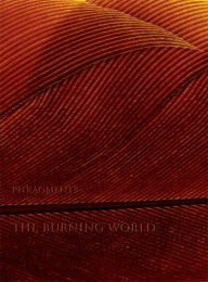 PHRAGMENTS -  The Burning World